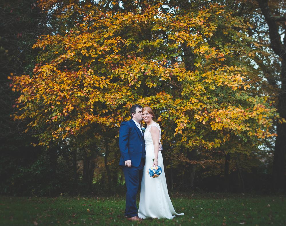 The Heritage Killenard Wedding photographs037.jpg