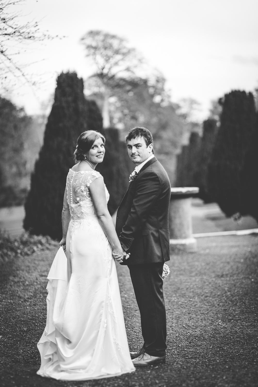 The Heritage Killenard Wedding photographs038.jpg
