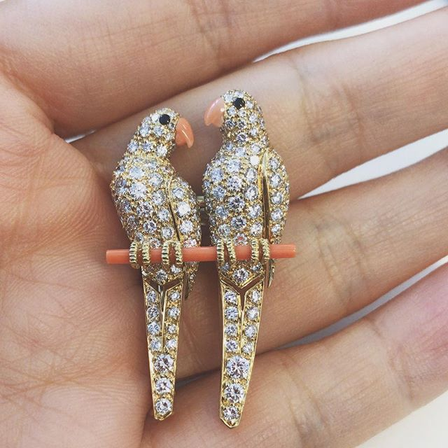 #sold the sweetest pair of Cartier lovebirds 💕 the longing gaze of the parrots, the delicate pink coral beaks and branch, no surprise they flew off our showcases pretty quickly. #gonetoagoodhome #Cartier #finejewellery #diamondandcoral #lovebirdsbrooch #revivalvintagejewels #revivalvintagejewelry
