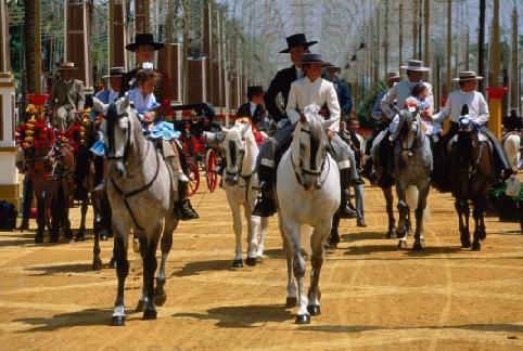 caballos feria jerez.jpg