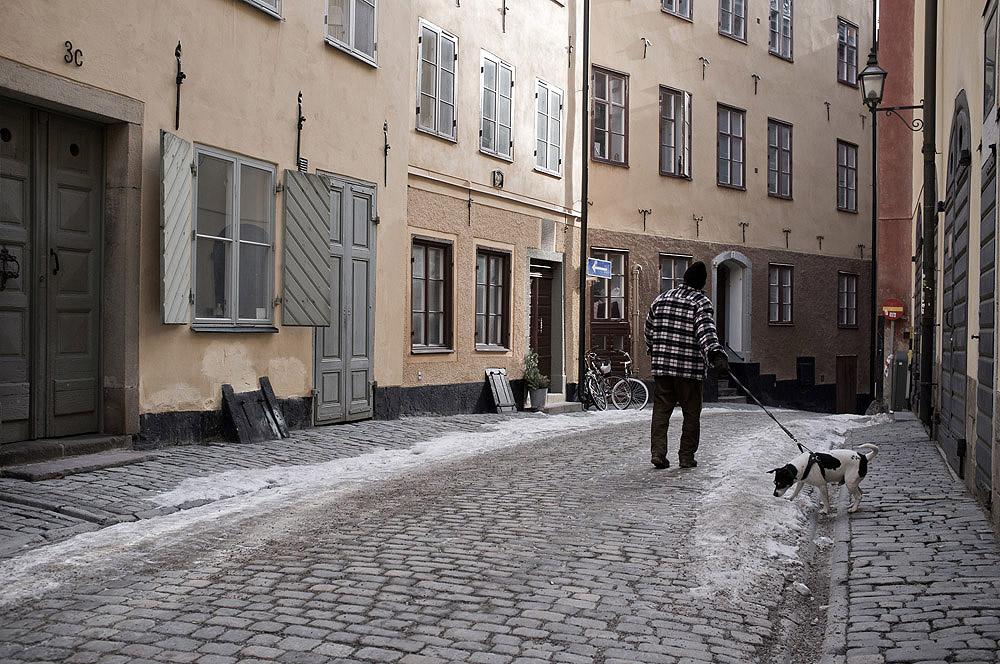 Stockholm2013Keiler_30.jpg