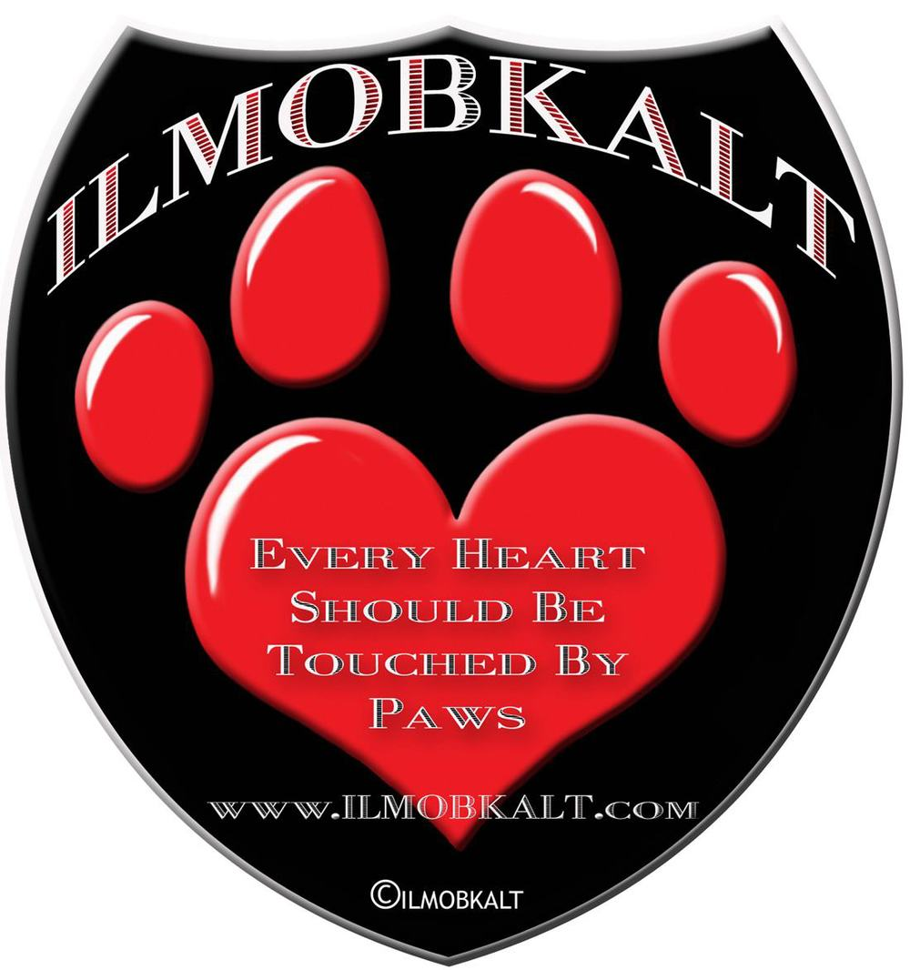 Providing magnetic signage for animal rescues and those who have huge hearts.