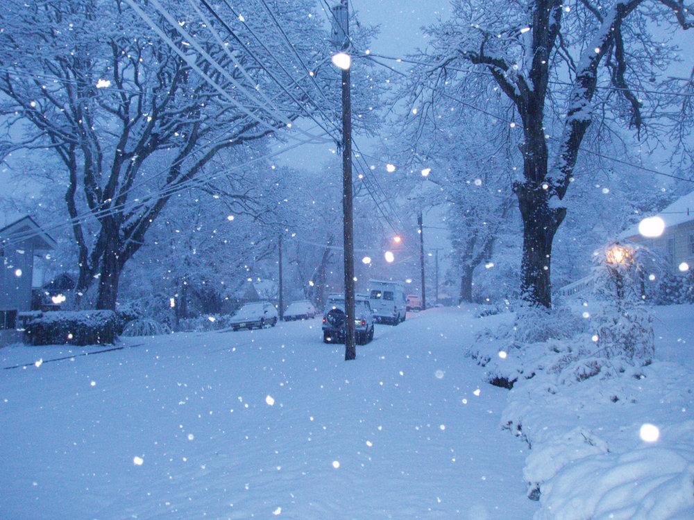 first-snowfall.jpg