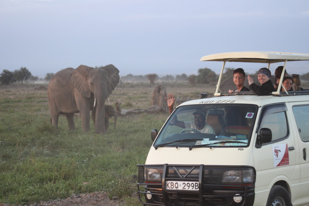 Simon gives a close up Safari in Kenya.