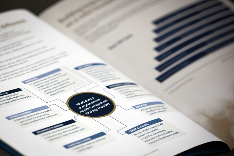 RBC Dominion Securities Brochure
