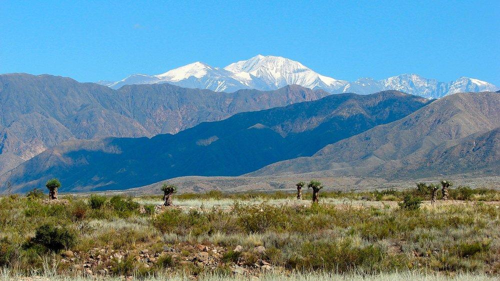 Luján_de_Cuyo,_Mendoza,_Argentina_-_panoramio_(7).jpg