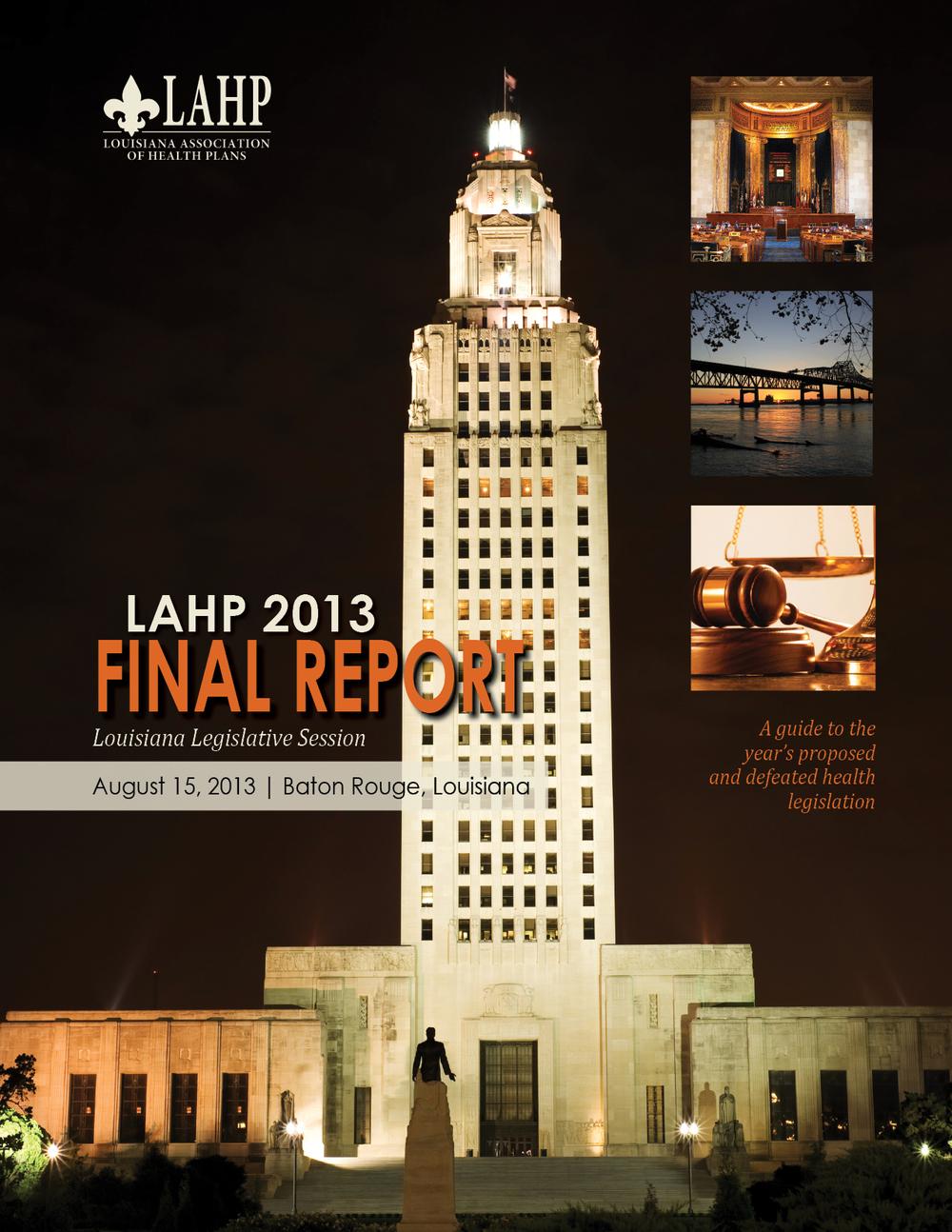 2013 Report Cover.jpg