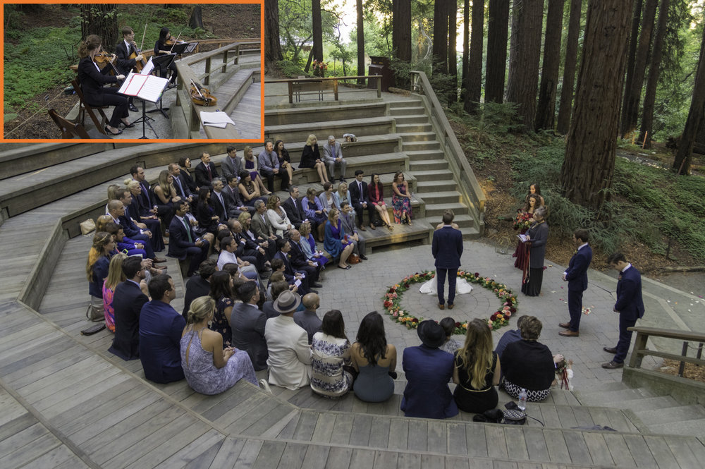 Masek Music performing at the Mather's Redwood Grove in Berkeley for Sarah. Congratulations!