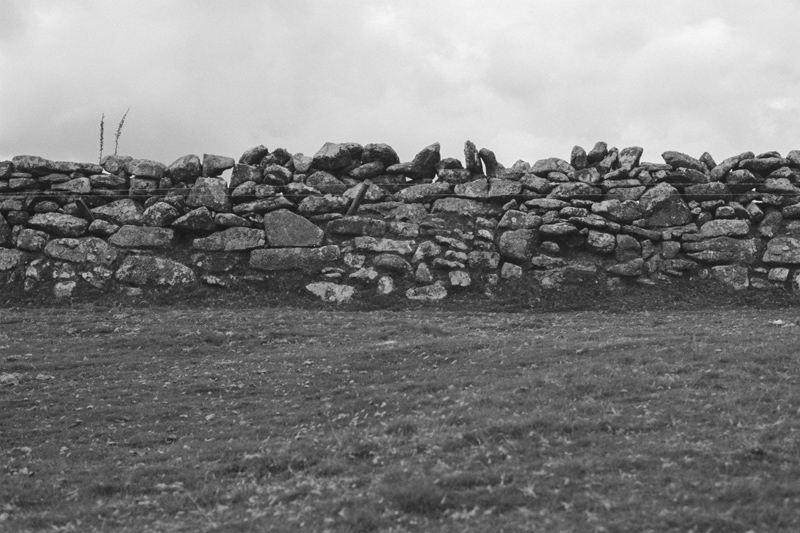 Dartmoor 2014 K-Gold005.jpg
