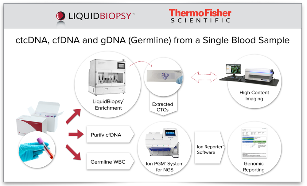 Comprehensive and distributable workflow for ctcDNA, cfDNA and germline sequencing with optional CTC enumeration and highly multiplexed genomic data.   <48 hour turn-around, Variant detection: 1% sensitivity, CTC enrichment: 1 in a billion cells