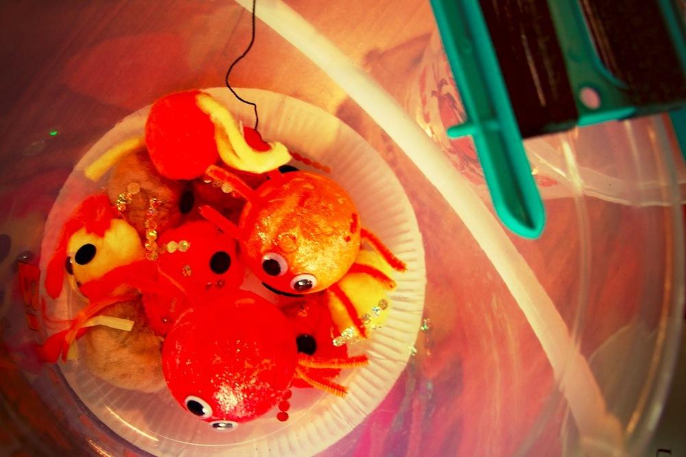 crabbing 10