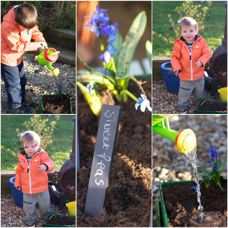 Planting Flowers Watering.jpg