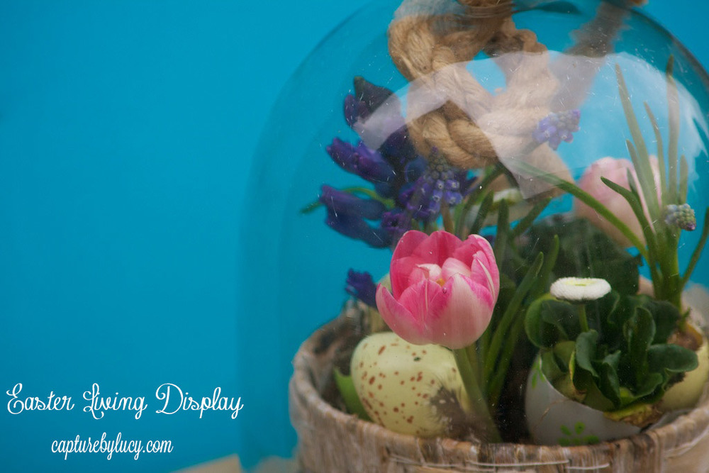 Living-Easter-Display.jpg