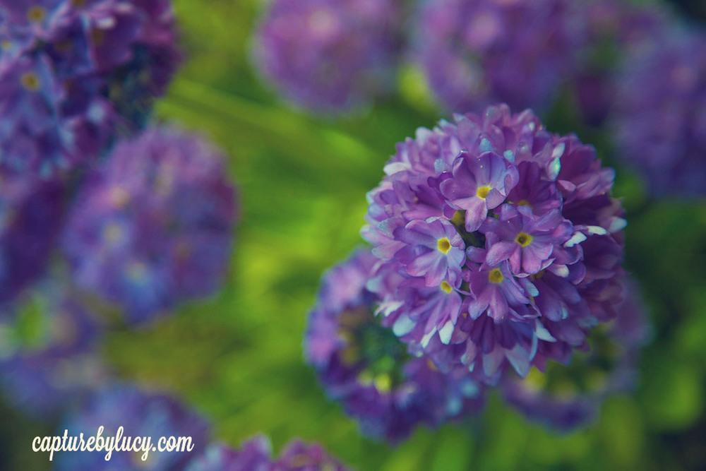Spring Nails.jpg