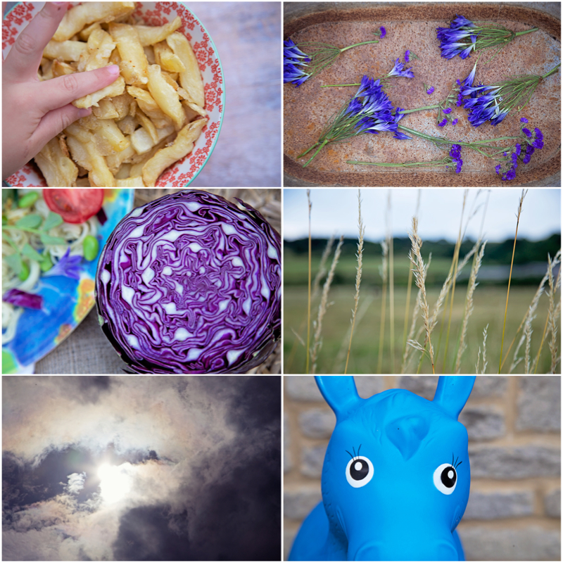 Week in Pictures Capture by Lucy.jpg
