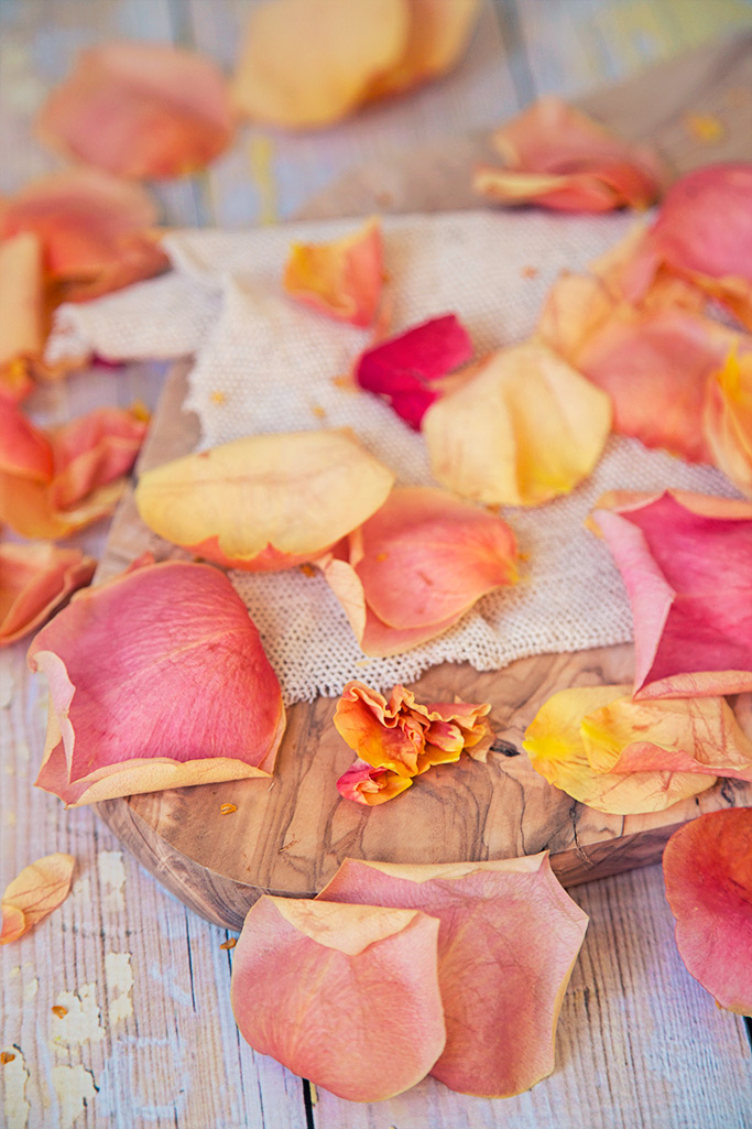 peach petals.jpg