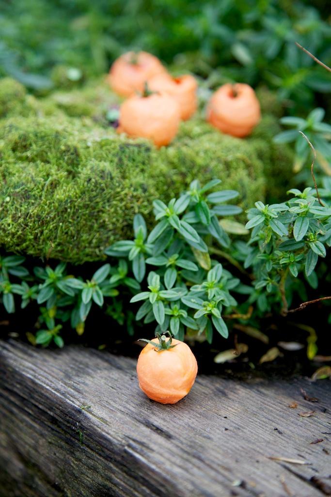 Mini Pumpkins.jpg
