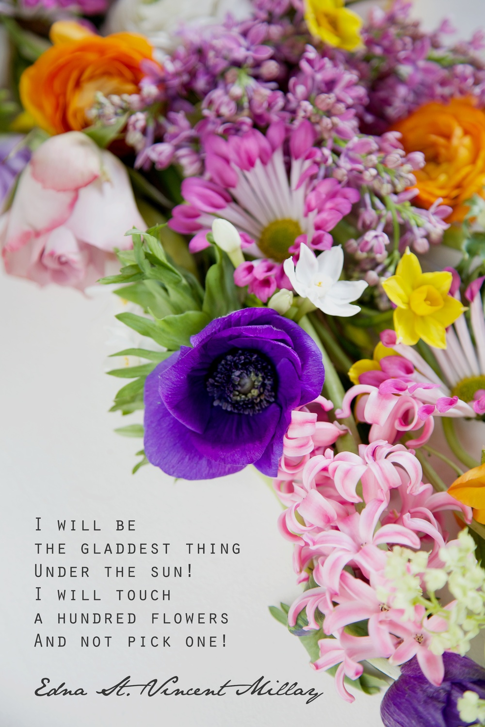 Flower Photography Quotes