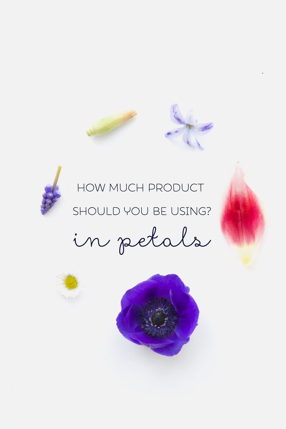 How much product to use