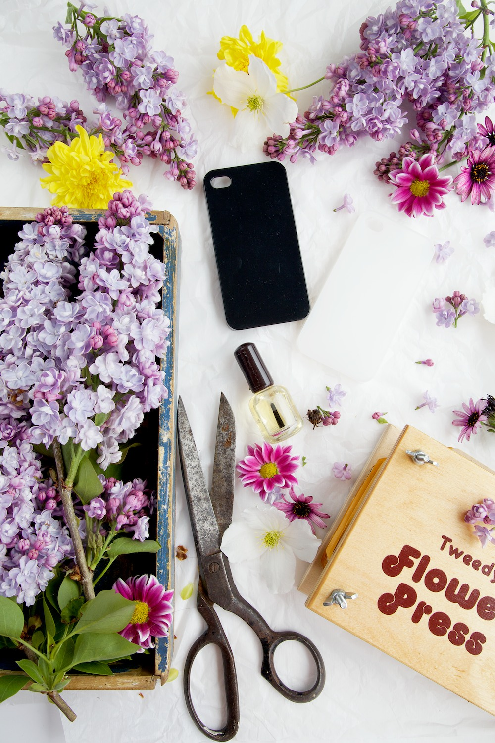 Pressed Flower Phone Case     DIY     Capture by Lucy KnMKmkBs
