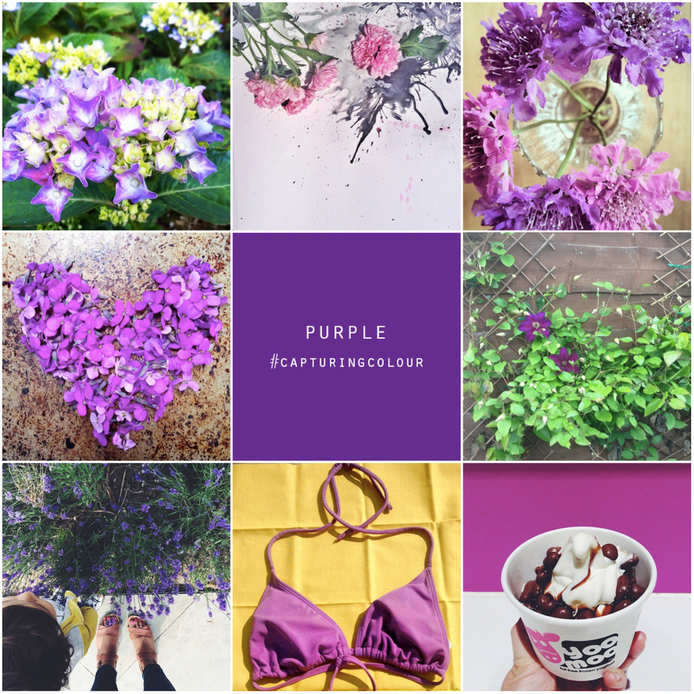 purple #capturingcolour