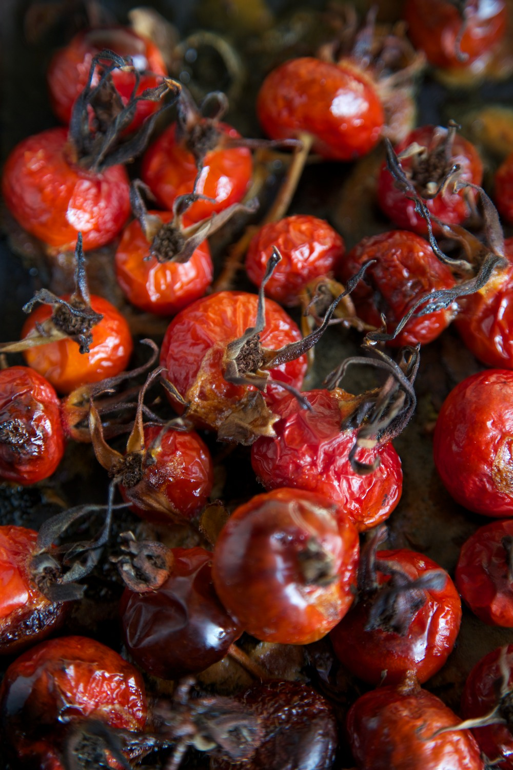 roasted rose hips