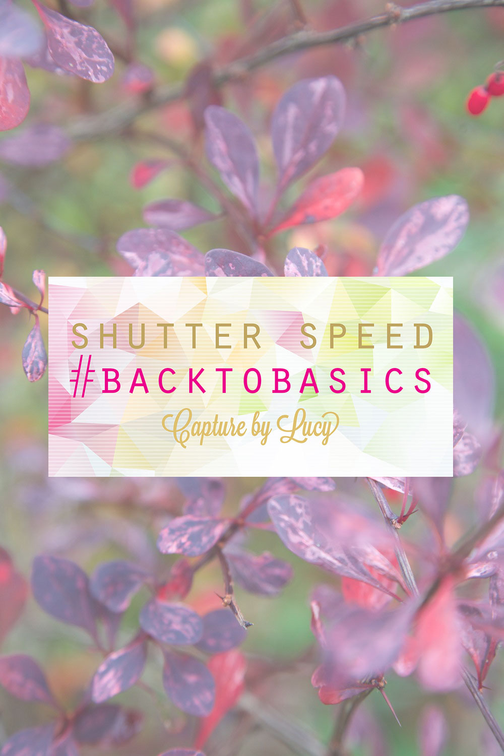 Shutter Speed Tutorial