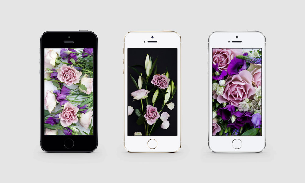 Flower phone backgrounds