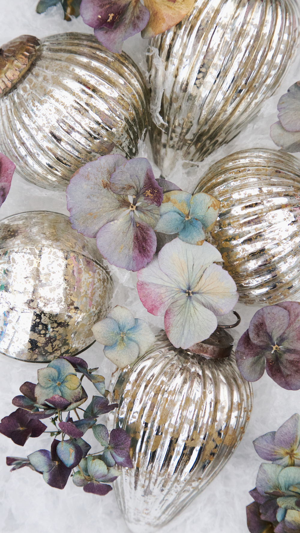 free winter floral wallpapers 9.jpg