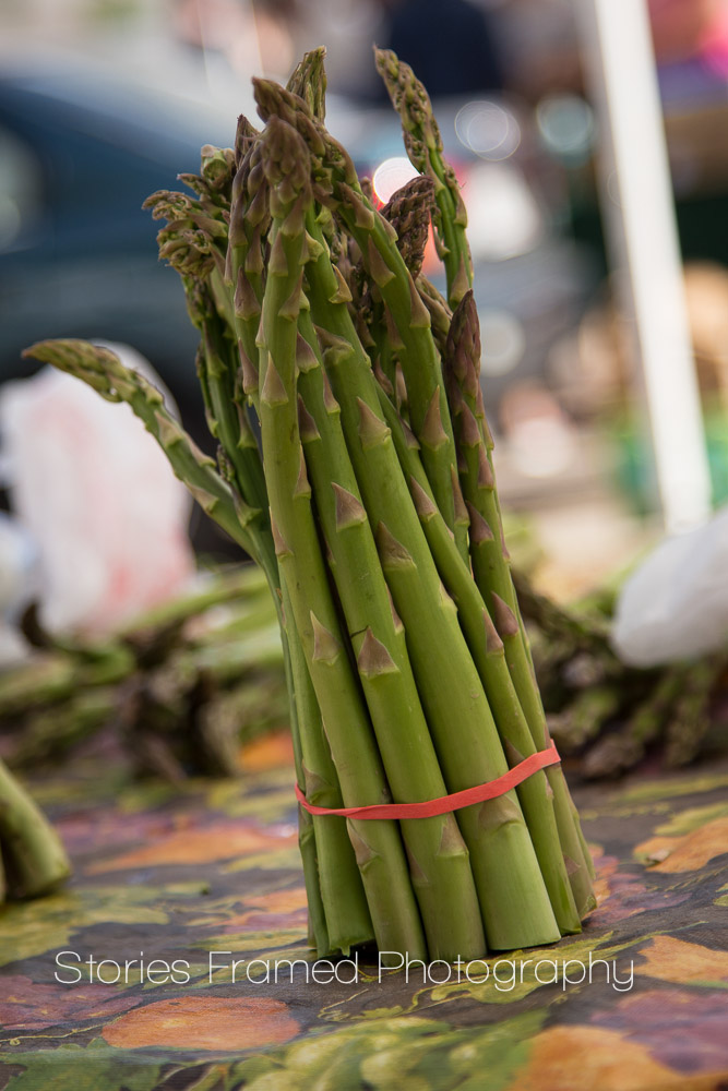 Stories Framed Photography | Tosa Farmers Market | asparagus