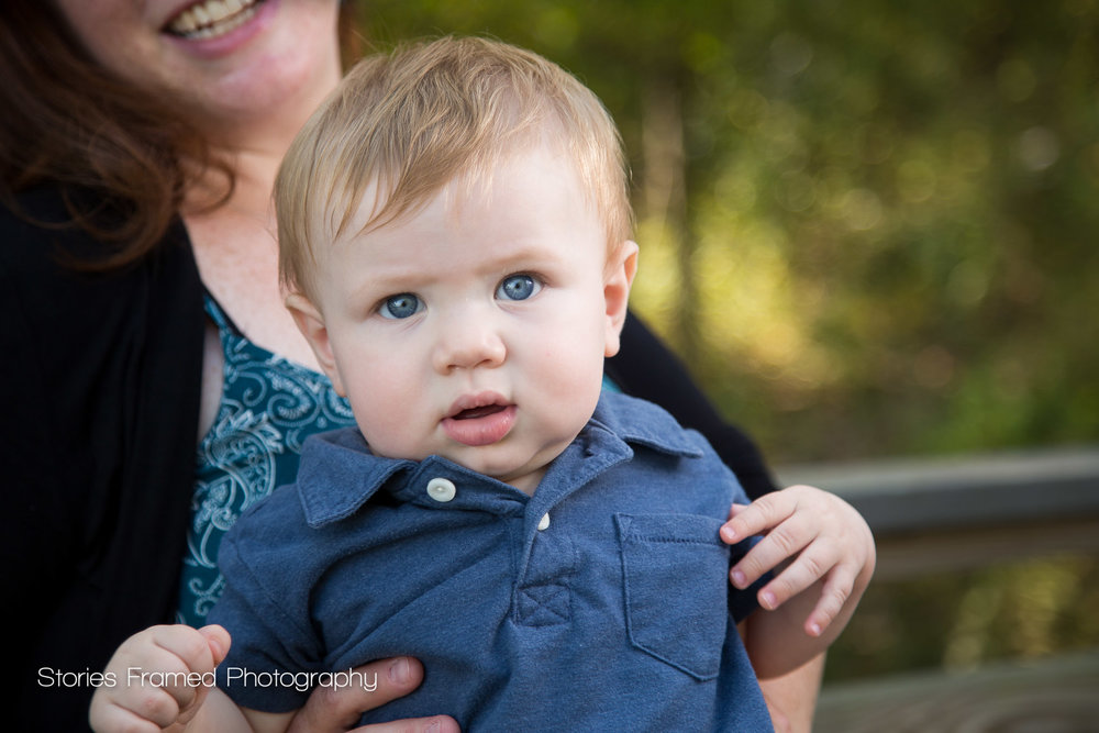 Sneak Peek Toddler Portrait