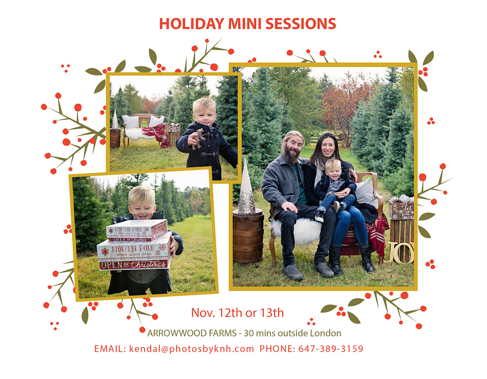 Holiday_Mini_2016.jpg
