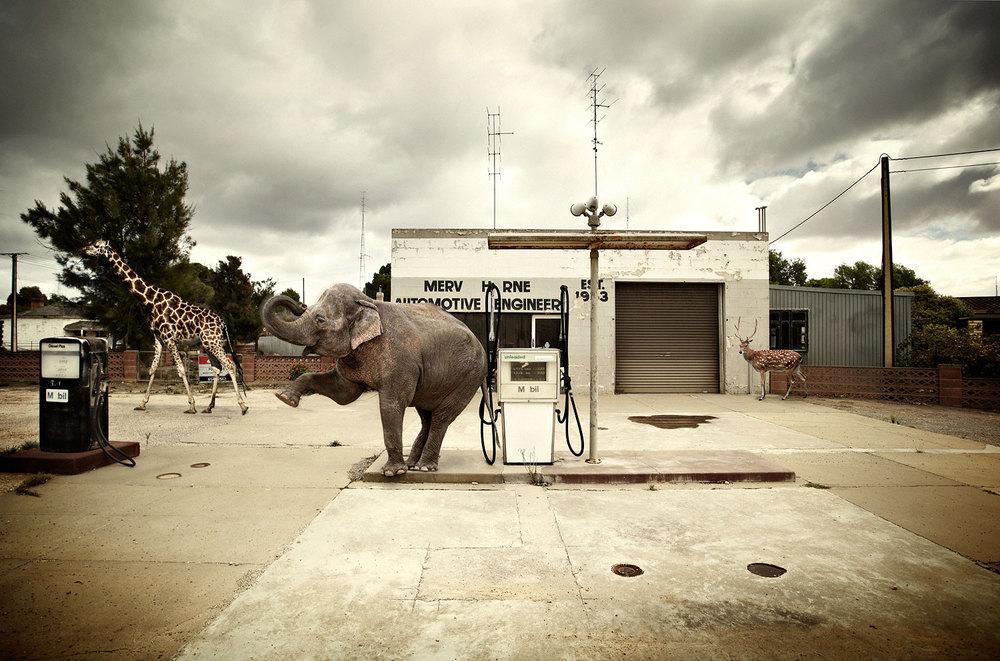 Zoo_station-web.jpg