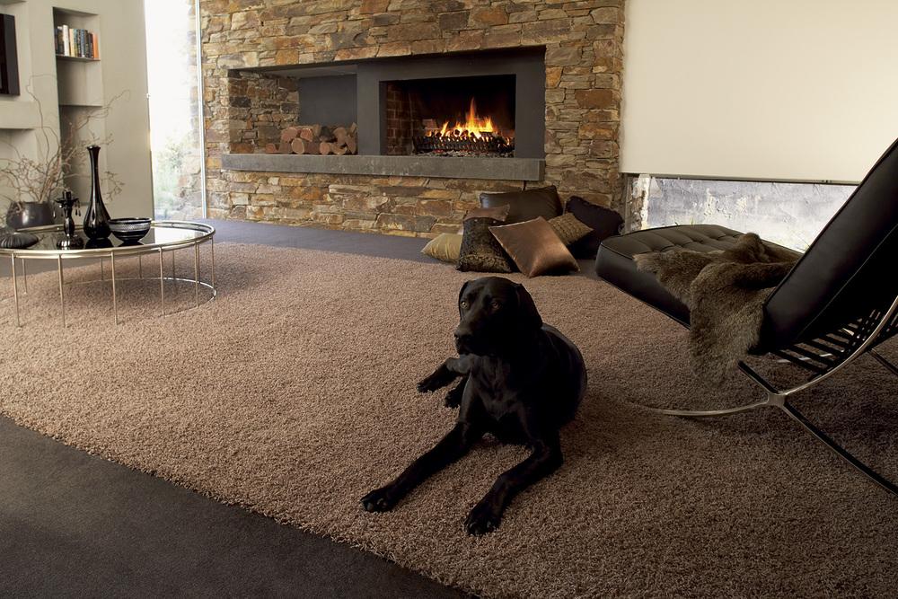 Fireplace with dog.jpg