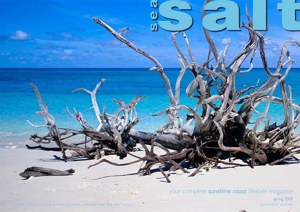 spring 09 cover-Chantal.jpg