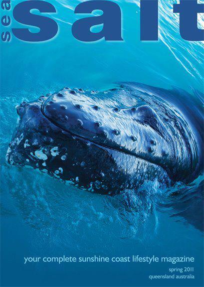 salt-whale.jpg