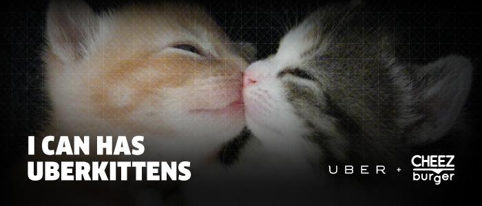 uber_uberkittens_graphics_700x300_r4v2.jpg