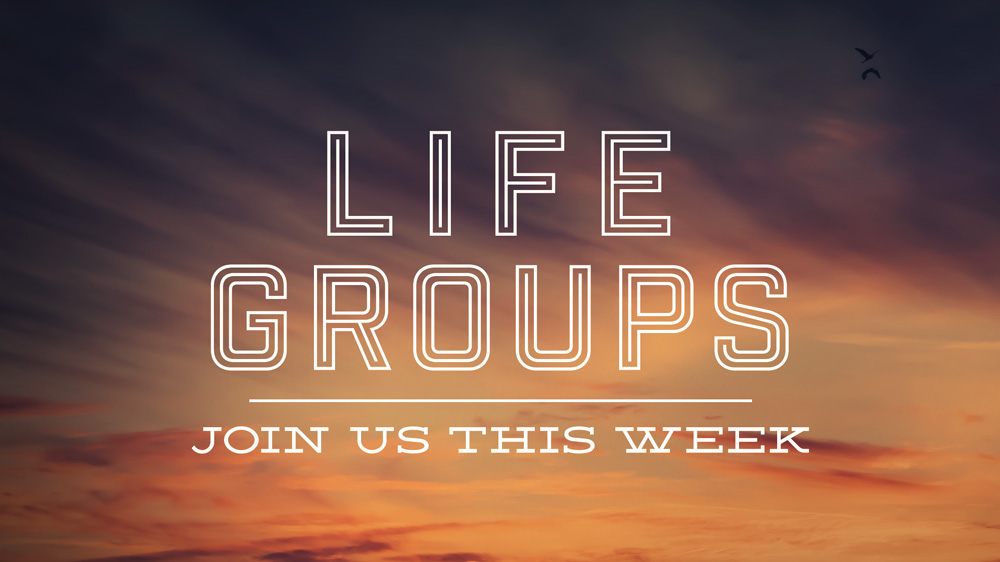 learn more about LIFE groups