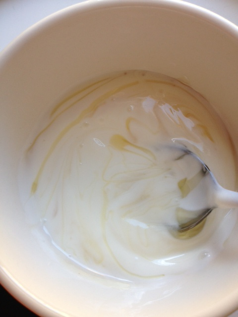 yogurt and honey.JPG
