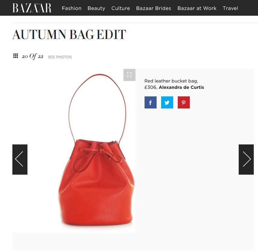 Harper's Bazaar May 2016 Alexandra de Curtis red leather bucket bag