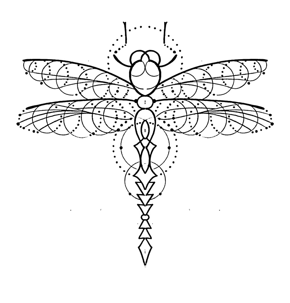 dragonfly1copy.jpg