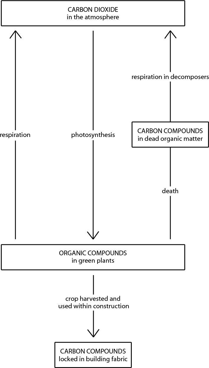 Carbon cycle of hemp