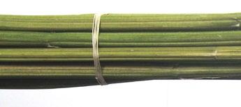 Bundle of hemp stalk tied withhemp string