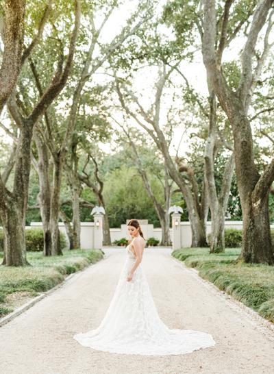 WEDDING SPARROW FEATURE