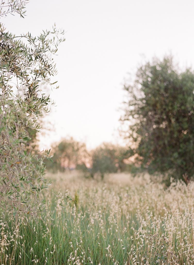Tuscany-Engage-17.jpg