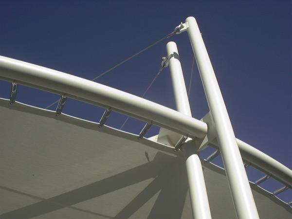 canopy6.jpg
