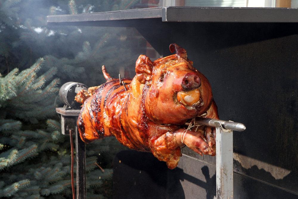 BBQ Pig Roast