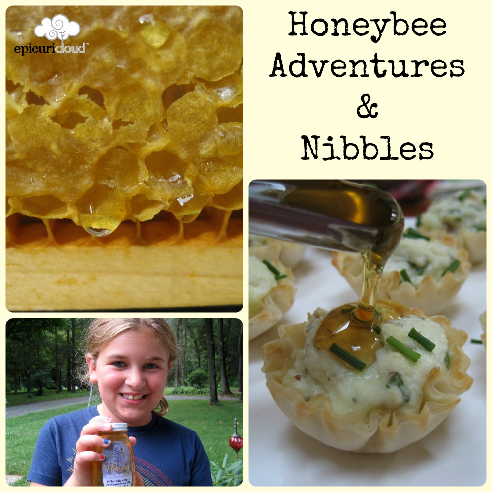 Honeybee Adventures2 Collage Title Logo.jpg
