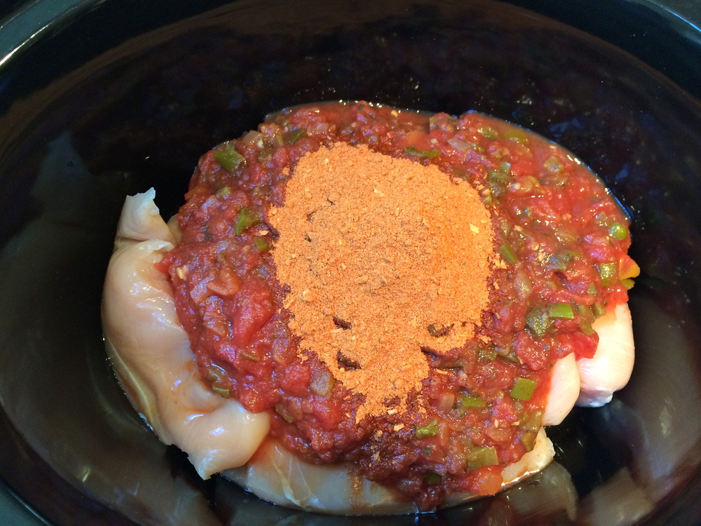 Place fresh or thawed chicken breasts in slow-cooker with salsa and taco seasoning - stir together