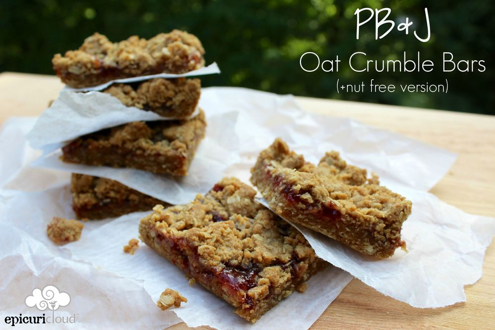 PB & J Oat Crumble Bars - Epicuricloud